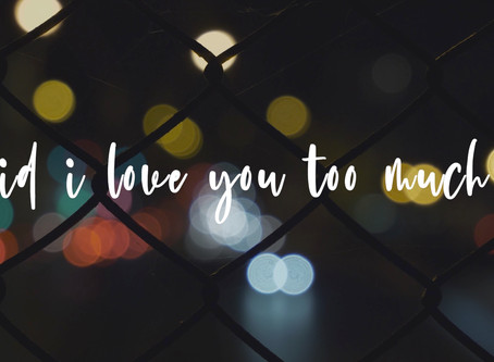 Rosendale - did i love you too much (Lyric Video)
