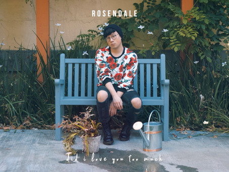 Rosendale - Did I Love You Too Much (Official Audio)