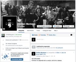 GOLDEN MONKEYS - FB
