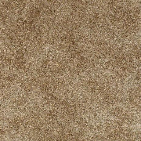 Home Ne Carpet