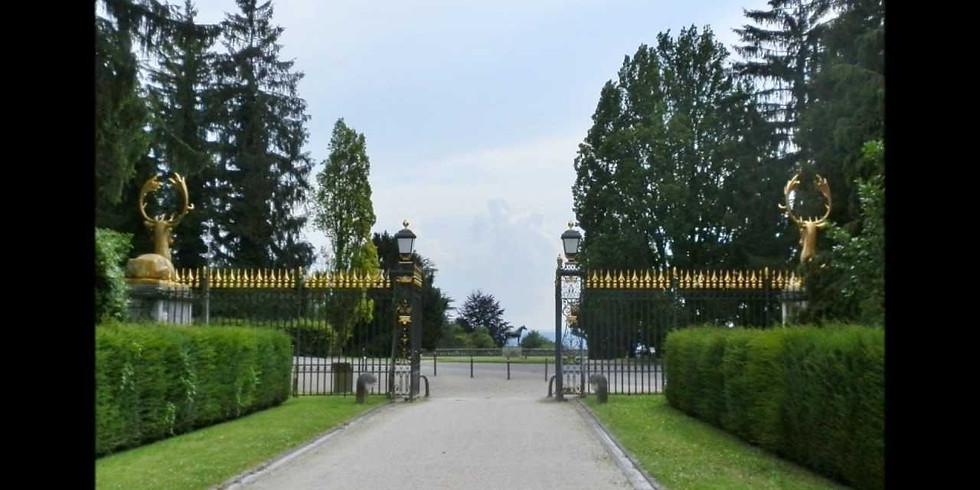 Nature Detectives Walk - Wenkenpark Riehen