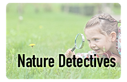 naturedetectives_icon.png