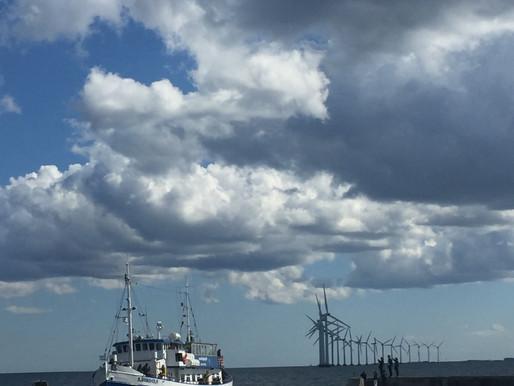 Steen Gade: Danmarks første havplan er på vej - Takken kan vi give et EU-direktiv