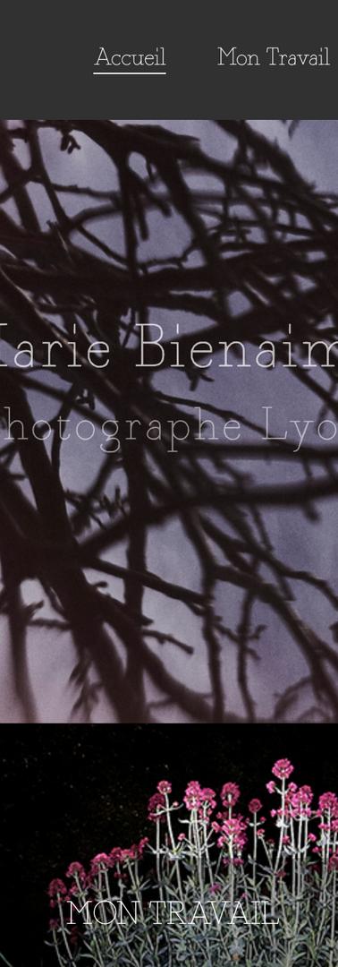 Marie bienaimé photographe