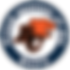 bc_lions-1-300x299.png