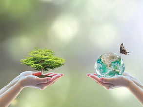 30 actions to save our planet