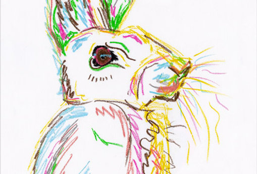 Horatio The Hare