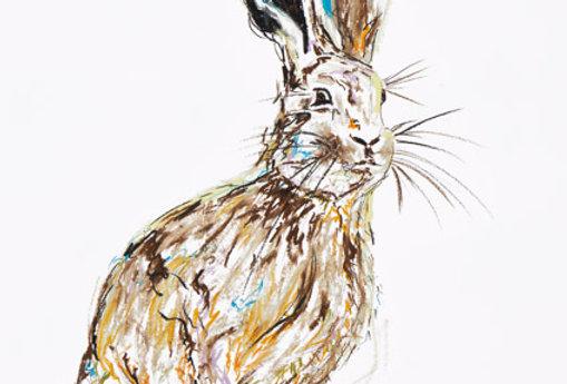 Hudsen The Hare