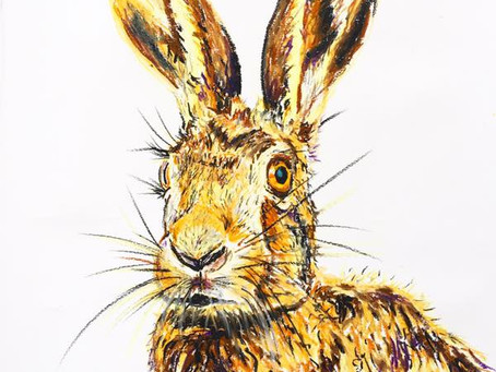 Signed & Mounted Animal Prints - Philippa Westaway!
