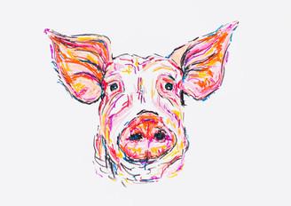 Peter The Pig.JPG