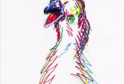 Gini The Goose