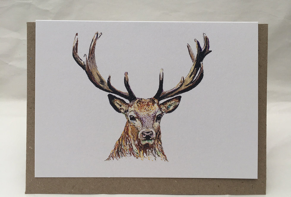 Greeting Card Stuart The Stag