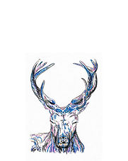 Serenity The Stag.jpg