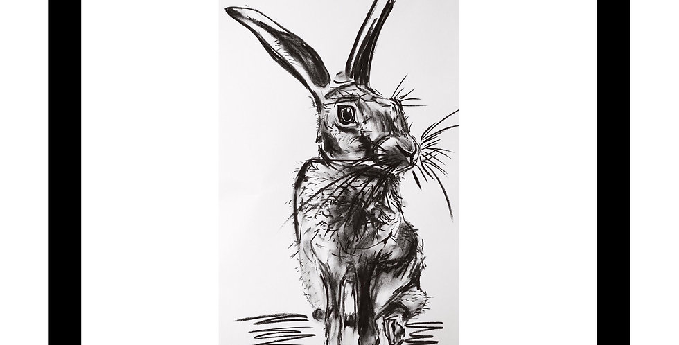 Charcoal Hare No.3