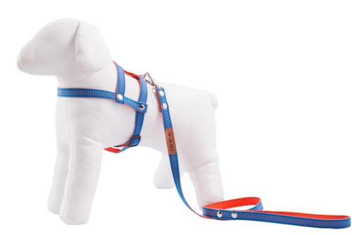 64ac2759e Peitoral com Guia para Cachorro GR PET Duo Azul