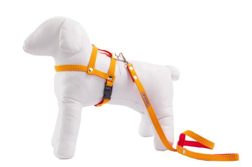 861d31f48 Peitoral com Guia para Cachorro GR PET Duo Amarelo