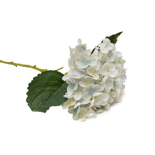 繡球花 (淺藍色)