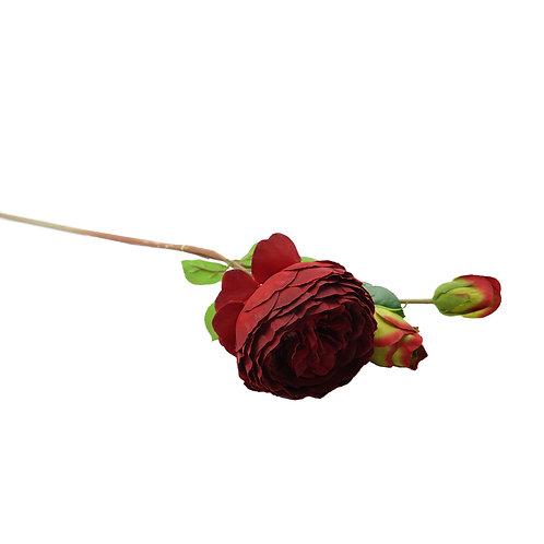玫瑰(暗紅)