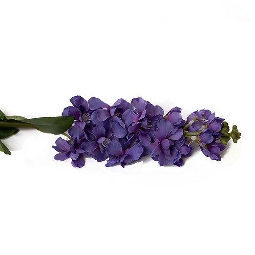 麝香(深紫)