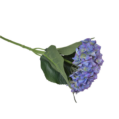 繡球花(紫)