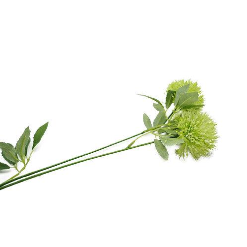 蔥花(青)