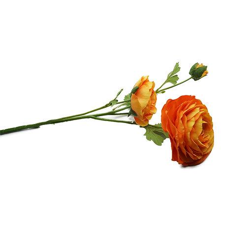 小牡丹(橙)