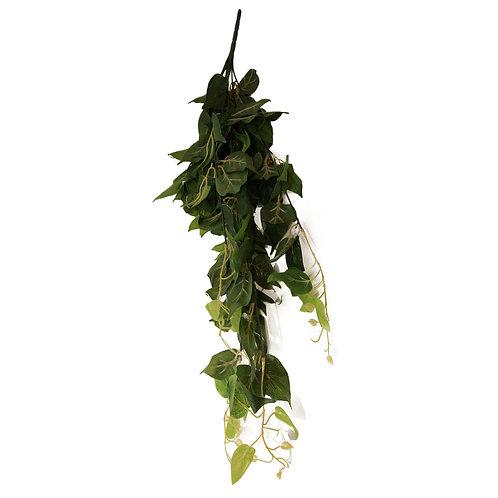 綠植(束)