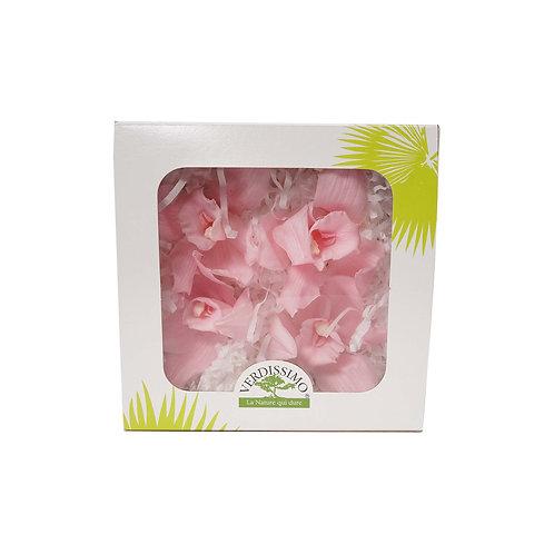 Verdissimo西班牙保鮮花 惠蘭