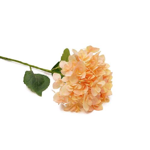 繡球花(淺橙)