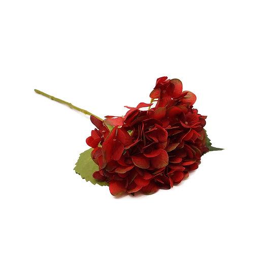 繡球花(紅)