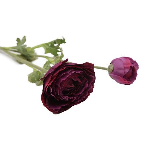小牡丹 (紫)