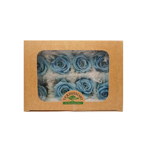 Verdissimo西班牙保鮮花 中玫瑰 8粒/盒