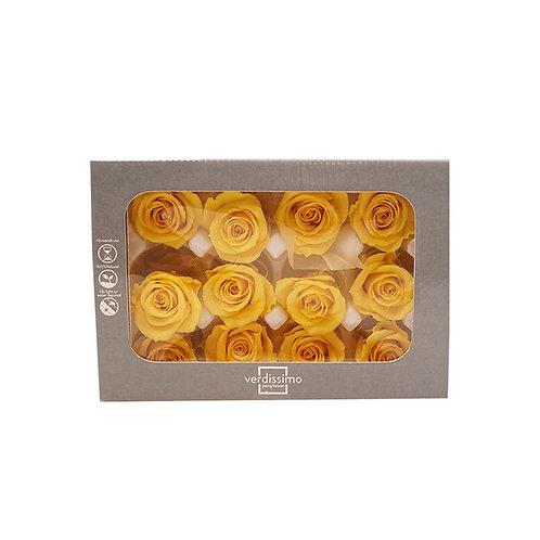 Verdissimo西班牙保鮮花 小玫瑰 12粒/盒