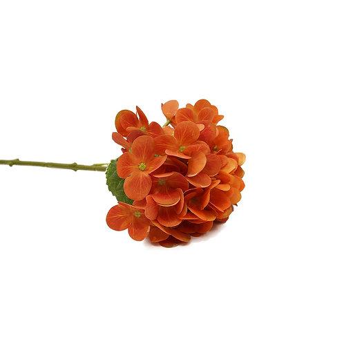 繡球花(橙)