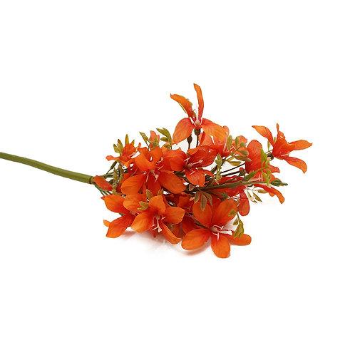 小百合(橙)