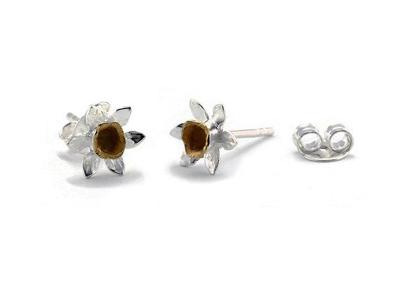 Daffodil Stud Earrings in Sterling Silver & Gold