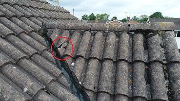 Drone image shows damaged tile