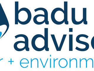 Welcome to Badu Advisory