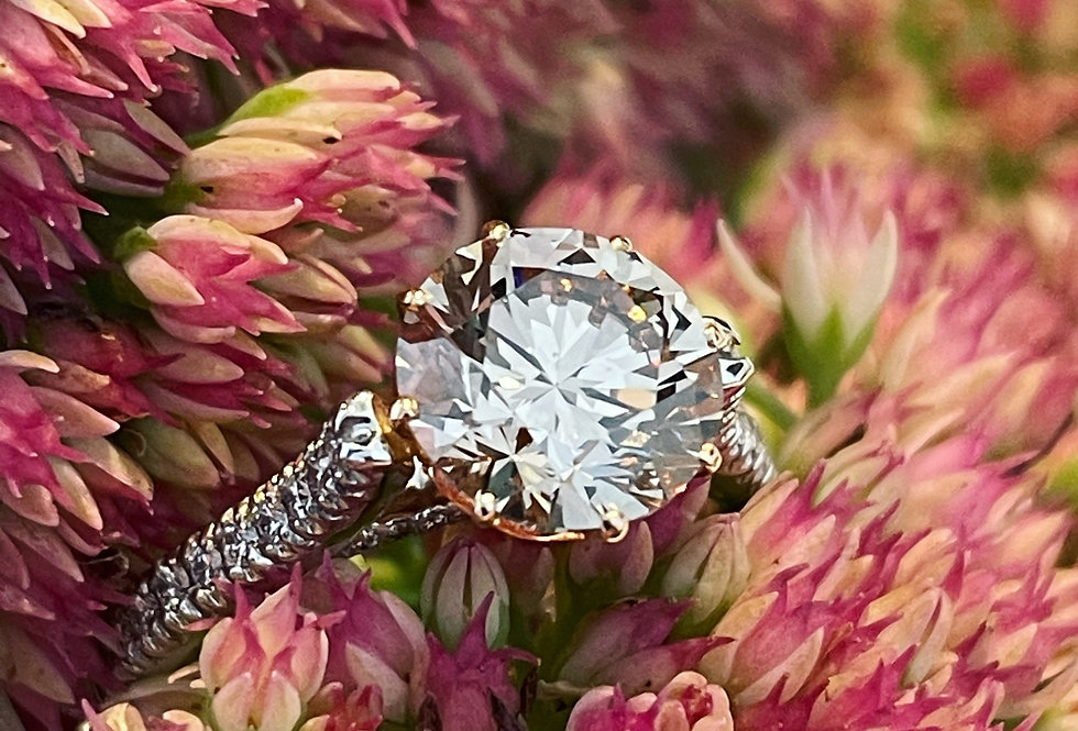 Platinum and rose gold 2.6ct champagne diamond ring