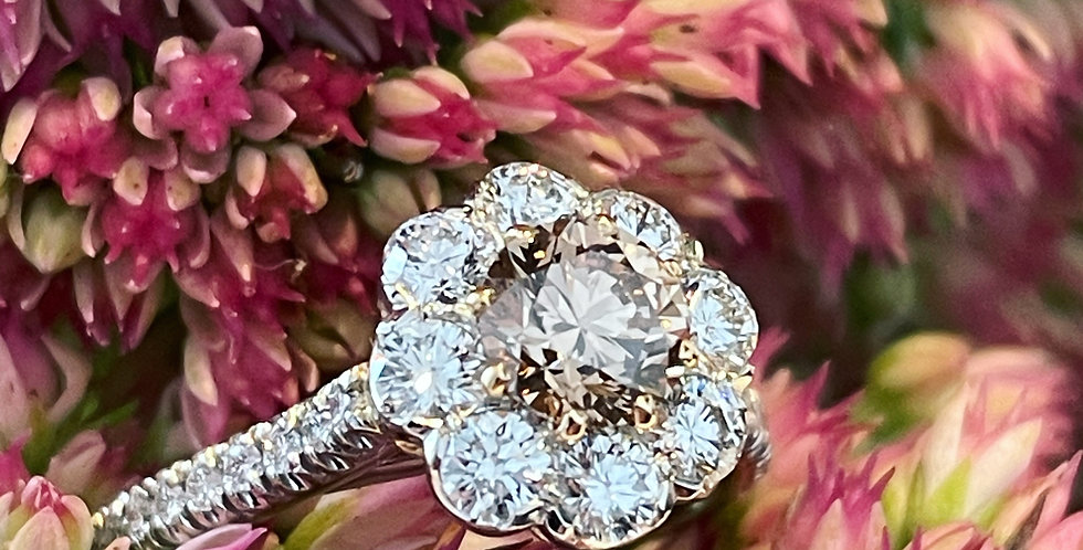 Platinum and rose gold Argyle Champagne Diamond cluster ring