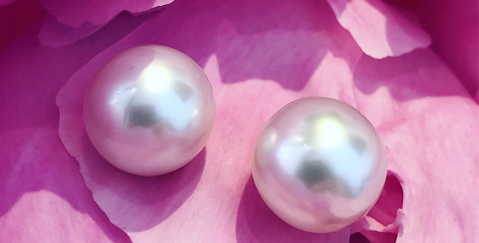 South Sea 12mm pearl stud earrings