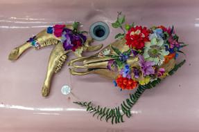 Jill OMeehan Art Trail Albany 2017 (5).j