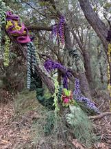 Jill OMeehan tree trail stirling (21).JP