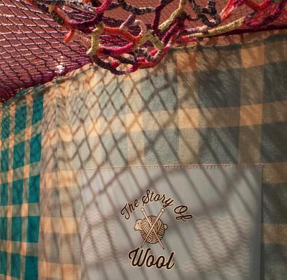 Jill OMeehan story of wool (2).png