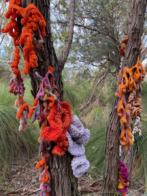 Jill OMeehan tree trail stirling (2).JPG