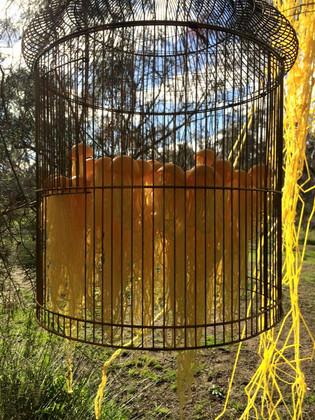 Jill OMeehan yellow jellyfish (2).jpg