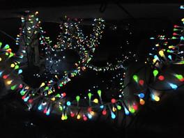 Jill OMeehan Proton Xmas 2016 (21).jpg