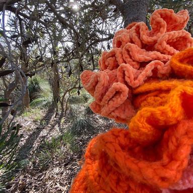 Jill OMeehan tree trail stirling (8).jpg
