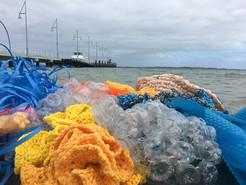 Jill OMeehan Sea Weed Beds 2017 (31).JPG