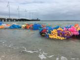 Jill OMeehan Sea Weed Beds 2017 (24).JPG